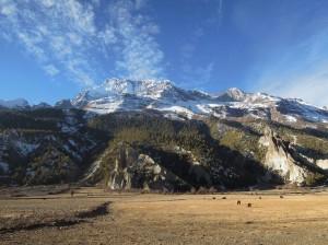 Annapurna III